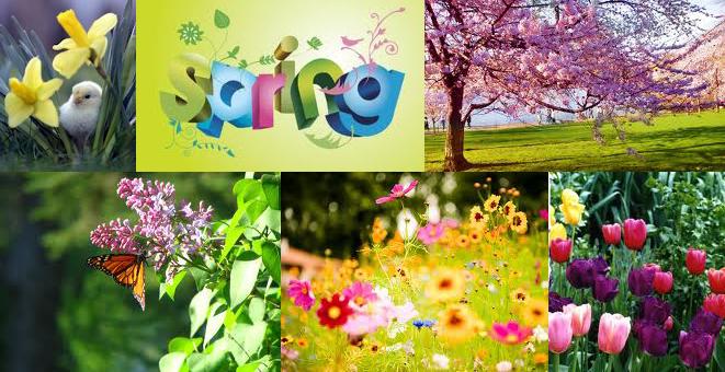 SpringTime Its Spring!